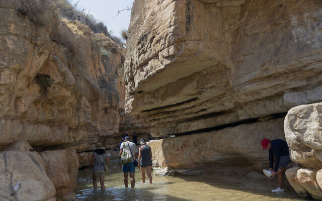Des Israéliens se rendent à une source d'eau pour se rafraîchir, pendant la vague de chaleur qui touche la région, à Wadi Qelt, près de la ville de Jéricho en Cisjordanie, le vendredi 4 septembre 2020. (AP Photo/Nasser Nasser)