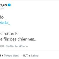 Le tweet du ministre délégué turc à la Culture, Serdam Can, publié mardi soir. (Twitter)
