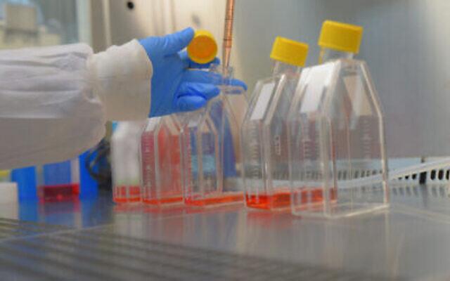 Un scientifique travaille au laboratoire de l'Institut israélien de recherche biologique, le 25 octobre 2020. (Crédit : ministère de la Défense)