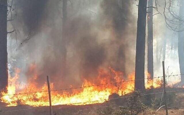 Un incendie près de Nof Hagalil dans le nord d'Israël, le 9 octobre 2020. (Crédit : Conseil de Nof Hagalil)