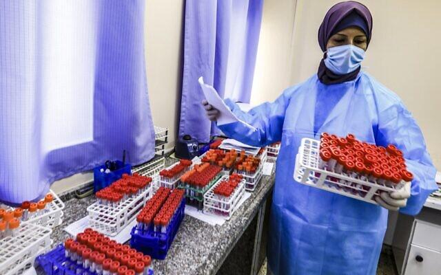 Une technicienne sanitaire s'occupe d'échantillons PCR collectés au laboratoire central du ministère palestinien de la Santé à Gaza, le 7 décembre 2020. (Crédit : MAHMUD HAMS / AFP)