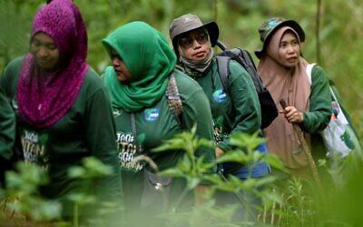 Un groupe de femmes gardes forestières patrouillant dans la forêt de Bener Meriah, dans la province d'Aceh, le 25 novembre 2020. (Crédit : CHAIDEER MAHYUDDIN / AFP)