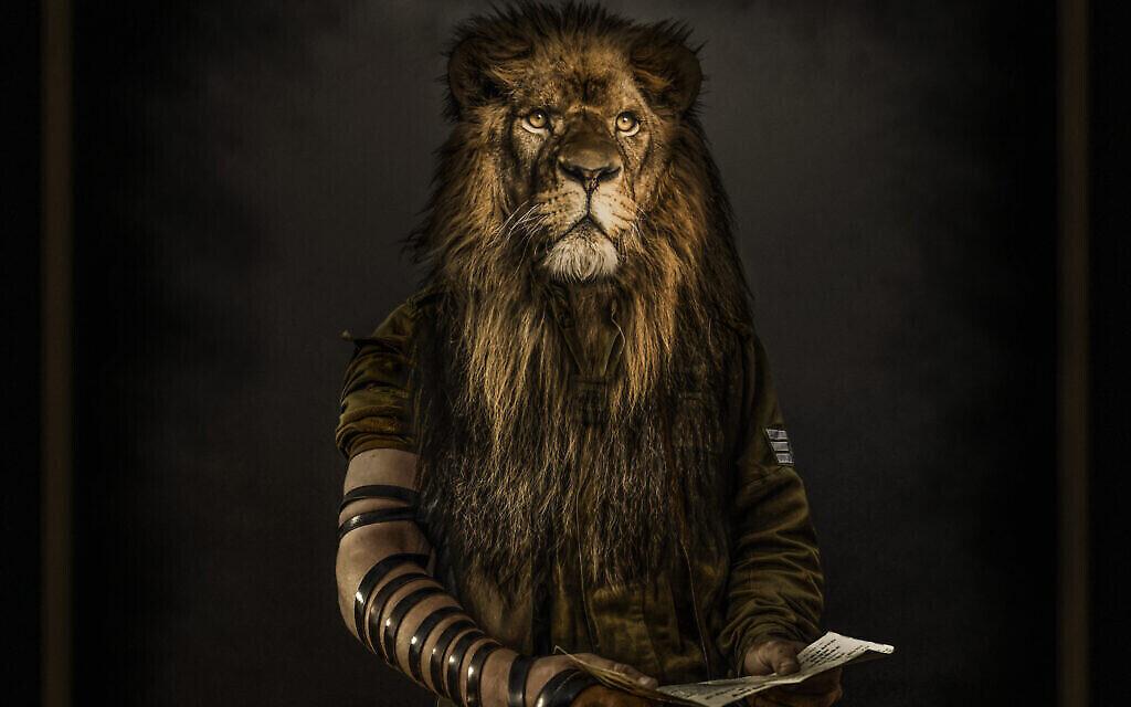 'Le Lion de Sion', créé par Moses Pini Siluk pour remonter le moral aux soldats blessés pendant la dernière guerre contre le Hamas à Gaza. (Crédit : Moses Pini Siluk)