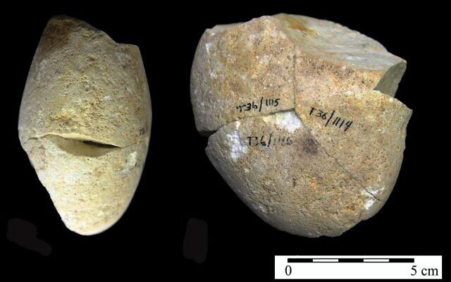 Un outil en pierre utilisé pour l'abrasion, datant d'environ 350 000 ans, a été découvert dans la grotte de Tabun au Mont Carmel. (Université de Haïfa)