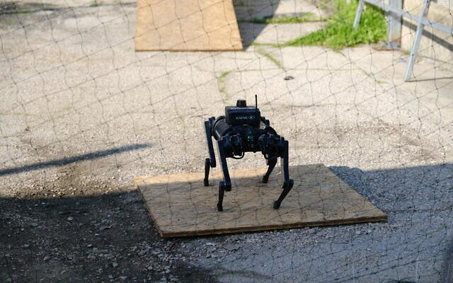 Un «chien» robotique autonome fabriqué par l'entreprise de défense Rafael équipé de capteurs avancés pouvant être utilisés par les soldats dans la guerre urbaine, ici lors d'une démonstration de l'appareil, le 24 décembre 2020. (Crédit : Rafael Advanced Defence Systems)