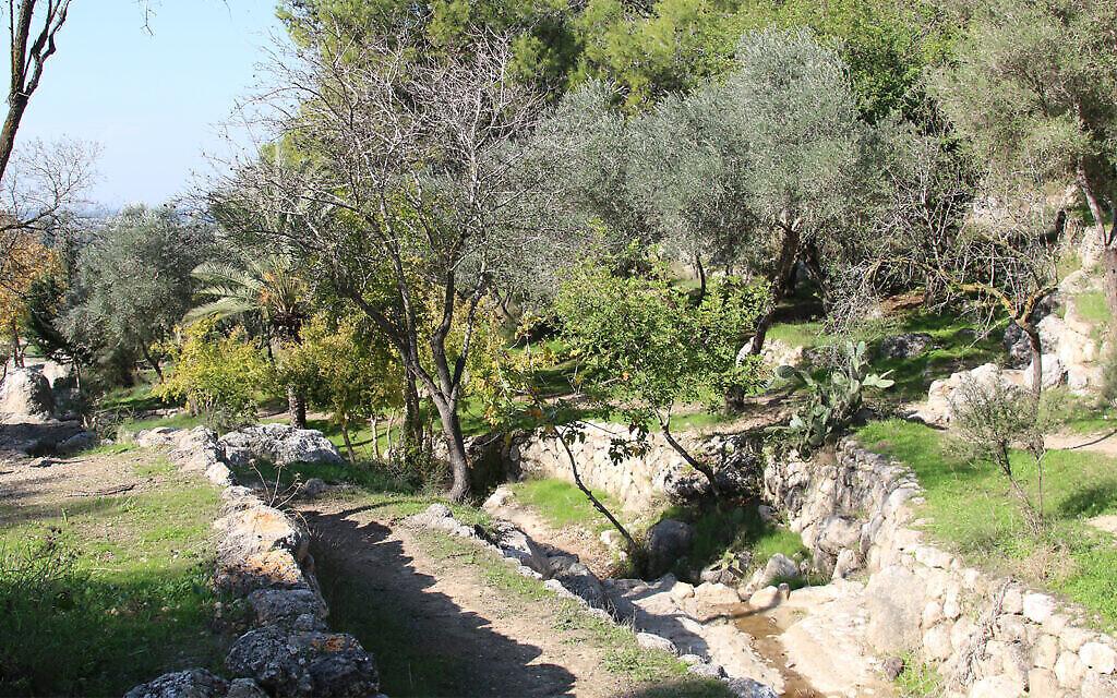 La vallée des sources, à l'extérieur de Modiin, présente des vestiges archéologiques, notamment des grottes résidentielles de l'époque romaine et des aqueducs en pierre. (Crédit : Shmuel Bar-Am)
