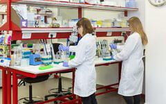 Des travailleurs du laboratoire Biond Biologics à Misgav, Israël (Crédit : Autorisation)