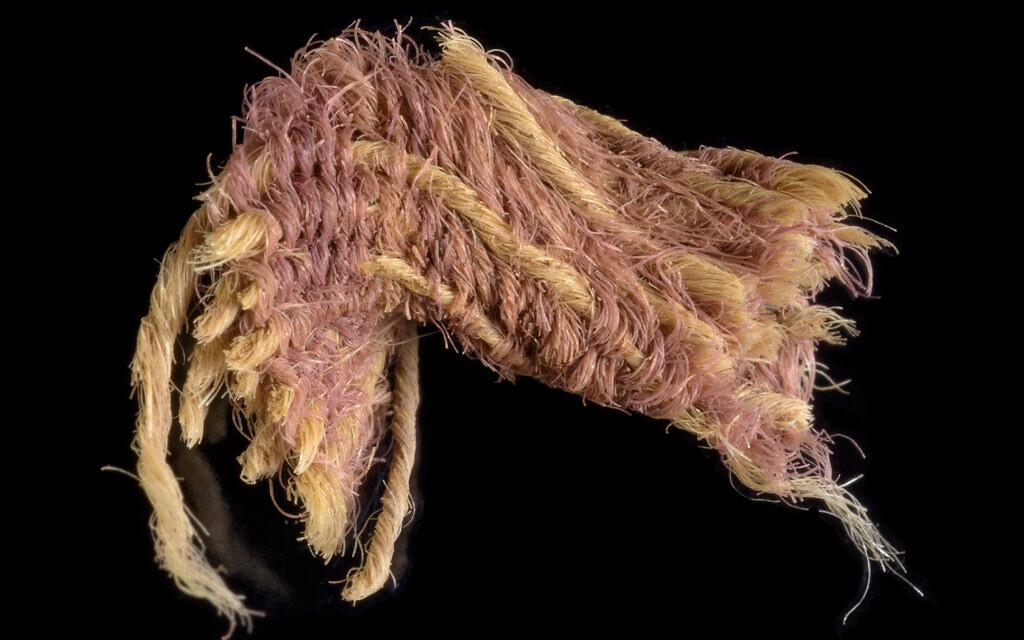Un fragment du rare tissu pourpre retrouvé dans la vallée de la Timna, datant de l'an 1000 avant l'ère commune. (Crédit : Dafna Gazit, Autorité israélienne des antiquités)