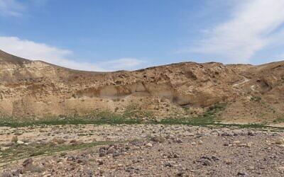 Une végétation riche au-dessus du lit de rivière pollué à Ashalim, tandis qu'elle est bien plus clairsemée sur le devant, touché par la catastrophe écologique entraînée par un déversement de produits toxiques au mois de juin de 2017. Photo prise le 29 avril 2019. (Autorisation :  HaMaarag)