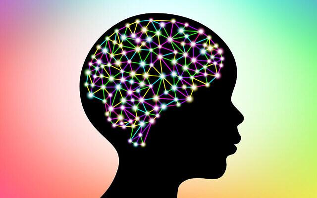 Illustration d'un cerveau humain. (apagafonova via iStock by Getty Images)