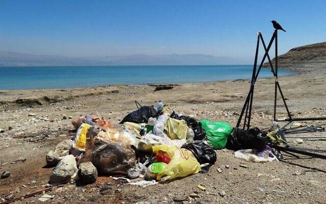 Des ordures sur les rives de la mer Morte. (Crédit : Dov Greenblat, Société de la Protection de la Nature en Israël)