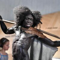 Photo d'illustration : Reconstitution d'un  Homo erectus vient d'un million six cent mille ans au musée de Néendertal de Mettmann, en Allemagne, le 3 juillet 2019. (Crédit :AMartin Meissner/AP)