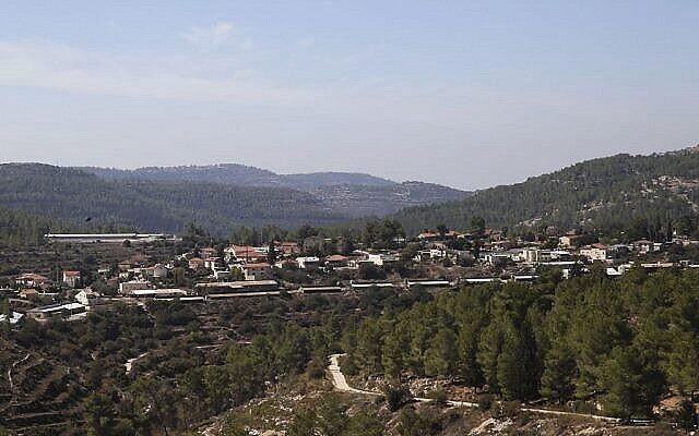 Vue d'Even Sapir et de la forêt qui l'entoure dans la banlieue de Jérusalem, le 23 octobre 2013. (Flash90)