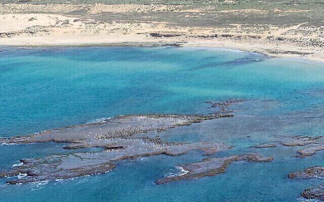 Les plaques de goudron sur les côtes du nord d'Israël, des photos prises depuis un hélicoptère par le directeur de l'Autorité de la nature et des parcs, Shaul Goldstein, le 22 février 2021.