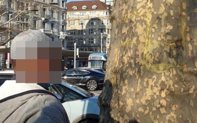 Un homme filmé gravant une croix gammée sur un arbre, à Zurich. (Crédit : Twitter / DR)