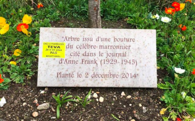 Une plaque en hommage à Anne Frank vandalisée par des militants anti-Israël, à Lyon, le 16 mars 2021. (Crédit : LICRA / Twitter)