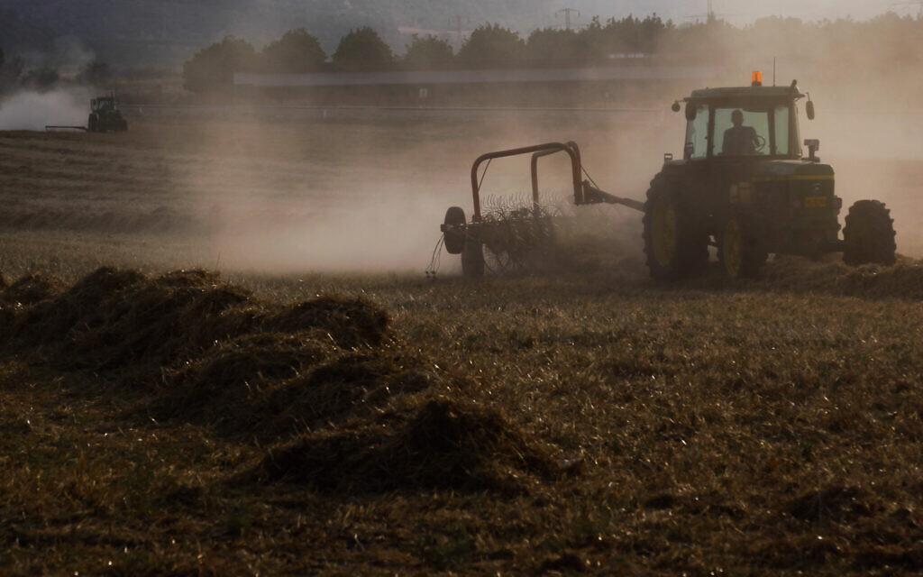 Un tracteur labourant un champ au kibboutz Tzora, près de la ville de Beit Shemesh, le 25 juin 2015. (Nati Shohat/Flash90)