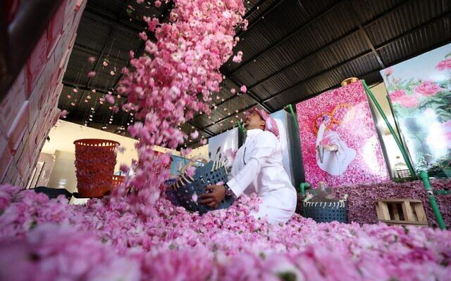 Un ouvrier de la ferme Bin Salman travaille avec des roses Damascena (Damas) pour produire de l'eau et de l'huile de rose, dans la ville de Taif, dans l'ouest de l'Arabie saoudite, le 11 avril 2021. (Crédit : Fayez Nureldine / AFP)