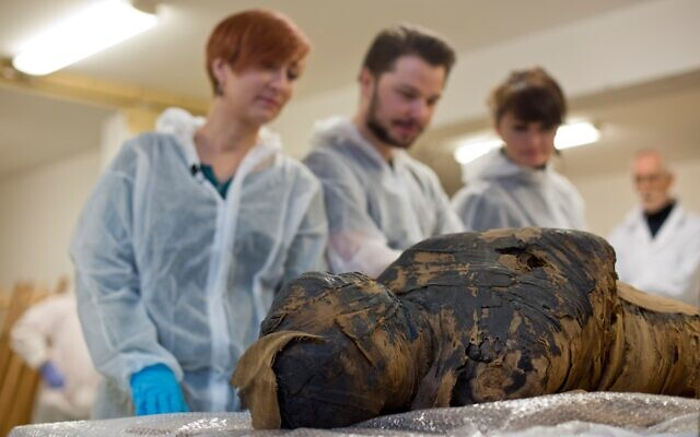 Une momie égyptienne enceinte, le premier cas du genre au monde, découverte en Pologne, en avril 2021. (Crédit : Aleksander Leydo (Leydo Film), Marcin Jaworski, Marzena Ożarek-Szilke i Stanisław Szilke / Warsaw Mummy Project / Musée national de Varsovie)
