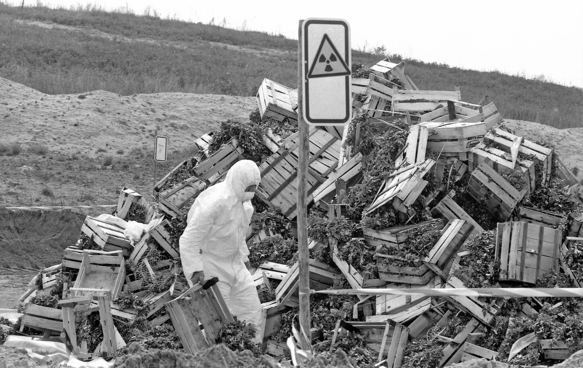 Un travailleur en habit de protection jette des cagettes de légumes contaminées dans une décharge de  Berlin-Wannsee, quelques jours après la catastrophe de Tchernobyl, le 9 mai 1986. (Crédit : AP Photo/Rainer Klostermeier/str)[