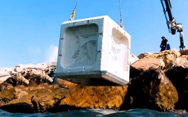 Au lieu de construire des blocs de béton - mauvais pour l'écologie marine, endommageant les écosystèmes des huîtres, des poissons et des coraux - ECOncrete utilise une technique connue sous le nom de biomimétisme, avec des produits en béton qui épousent la forme et la texture des systèmes naturels (Capture d'écran : YouTube)