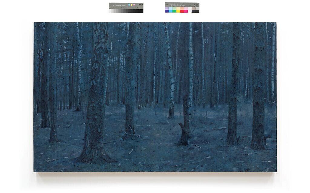 """Une forêt à Sobibor, tirée de """"Prussian Blue"""", la série de 50 peintures de Yishai Jusidman, exposée au Mishkan Museum of Art à Ein Harod à partir du 24 mars 2021 (Crédit : Ein Harod)."""