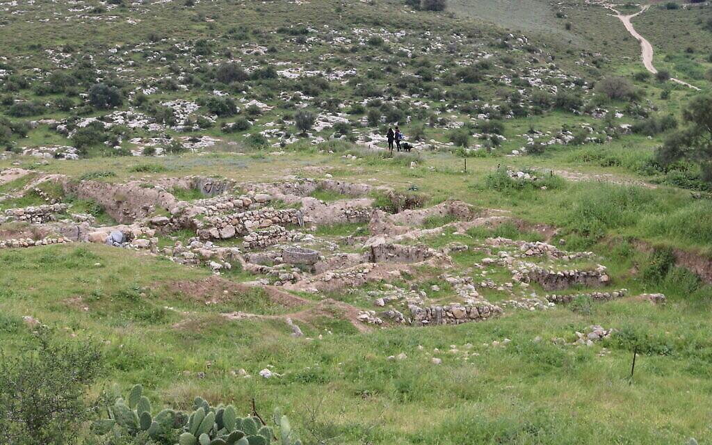 Le site de fouilles de Tel Tzafit. (Shmuel Bar-Am)
