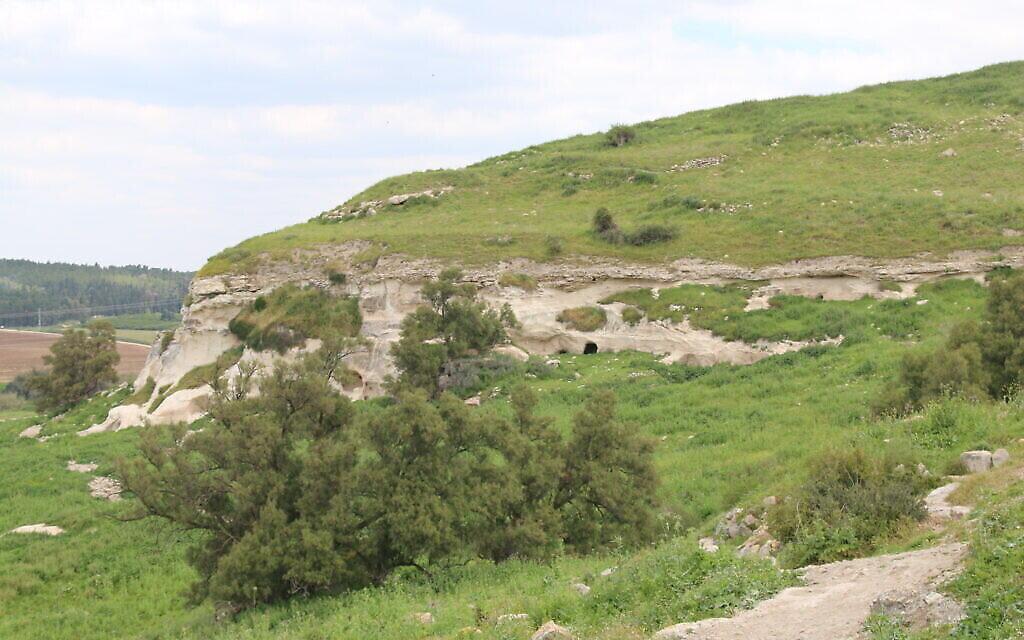 Les falaises blanches sous le site de la Blanche Garde à Tel Tzafit. (Shmuel Bar-Am)