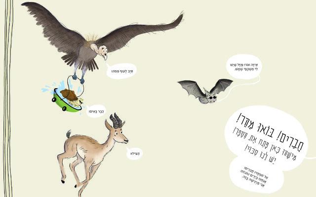 Illustration tirée du Livre rouge, commandé par l'Autorité israélienne pour la nature et les parcs, écrit par Shoham Smith et illustré par Talia Drigues. (Crédit : Autorité israélienne pour la nature et les parcs)