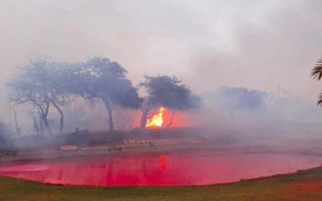 Un incendie de forêt déclenché par une roquette tirée de Gaza fait rage dans le parc national de Nahal HaBesor, dans le sud d'Israël, le 20 mai 2021. (Crédit : autorisation)