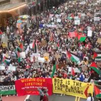 Une manifestation pro-palestinienne dans le centre ville de Manhattan dans le contexte d'escalade des violences entre Gaza et Israël, le 11 mai 2020.  (Capture d'écran/Twitter)