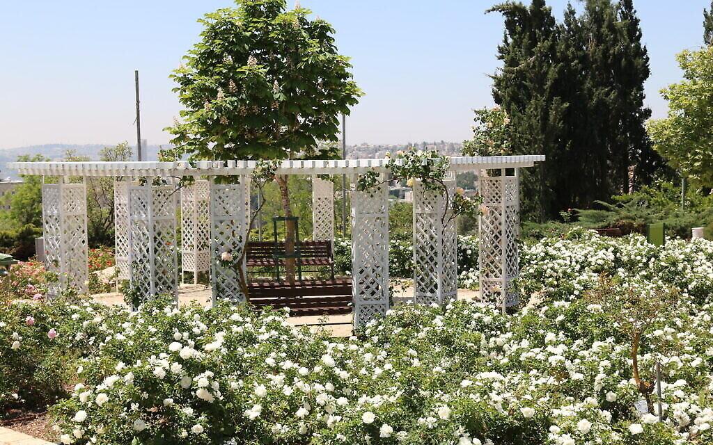 Le jardin français du Wohl Rose Park de Jérusalem, au mois d'avril 2021. (Crédit : Shmuel Bar-Am)