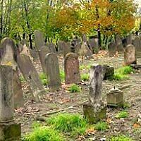 Le cimetière juif de Koenigshoffen, à Strasbourg. (Crédit : Micharthur 007/ CC BY-SA 3.0)