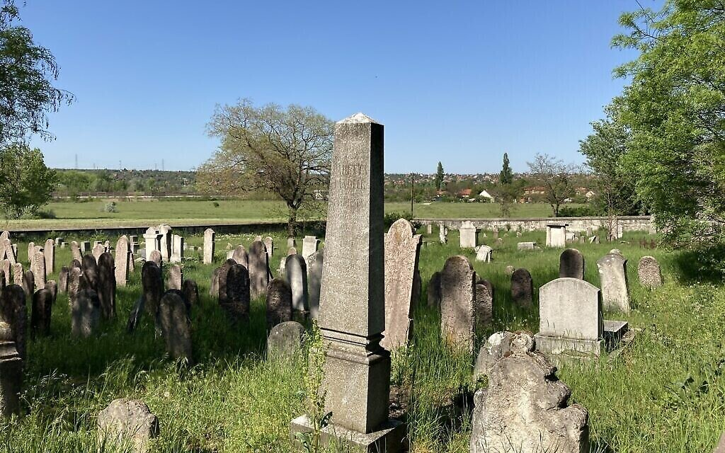 Meadows surround the ancient Jewish cemetery in Nagyteteny, Budapest, May 11, 2021. (Credit: Yaakov Schwartz/ Times of Israel)