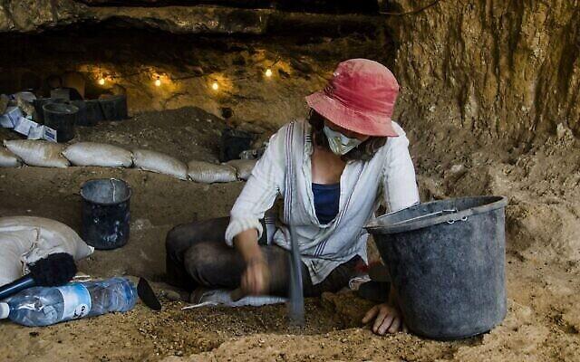 Un chercheur travaille dans la grotte où les restes d'un rat à crinière ont été trouvés. (Crédit : Université de Haïfa)