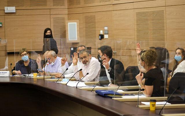 Les membres de la commission parlementaire de la Knesset votent pour établir une série de nouvelles commissions parlementaires, le 25 juillet 2021. (Crédit : Knesset)