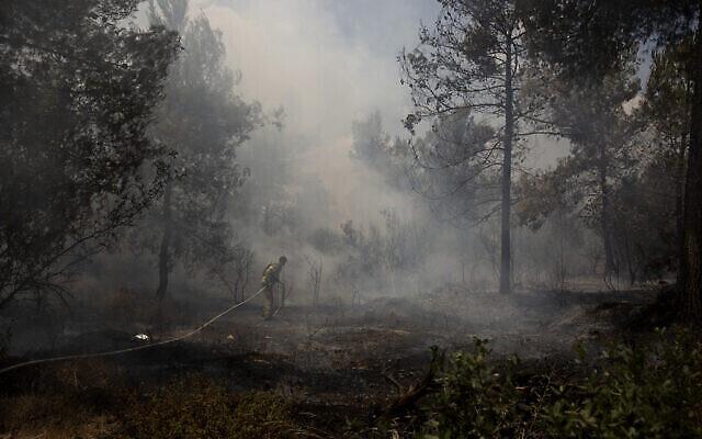 Un pompier israélien lutte contre les incendies de forêt près de Shoresh, à la périphérie de Jérusalem, le 16 août 2021. (Crédit : AP Photo/Maya Alleruzzo)