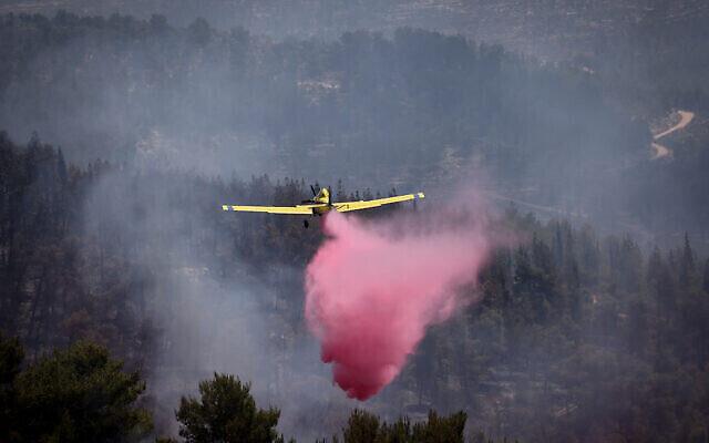 Des pompiers et des citoyens israéliens tentent d'éteindre un incendie qui s'est déclaré dans une forêt près de Beit Meir, à l'extérieur de Jérusalem, le 16 août 2021. (Crédit : Yonatan Sindel/Flash90)