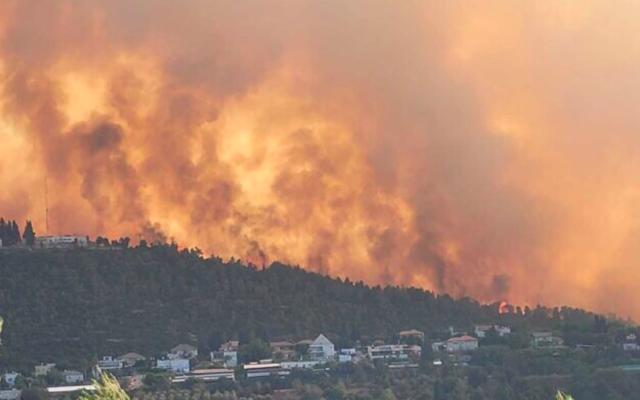 Un feu de forêt à l'ouest de Jérusalem, le 15 août 2021. (Crédit : Ariel Kedem/Autorité israélienne de la nature et des parcs)