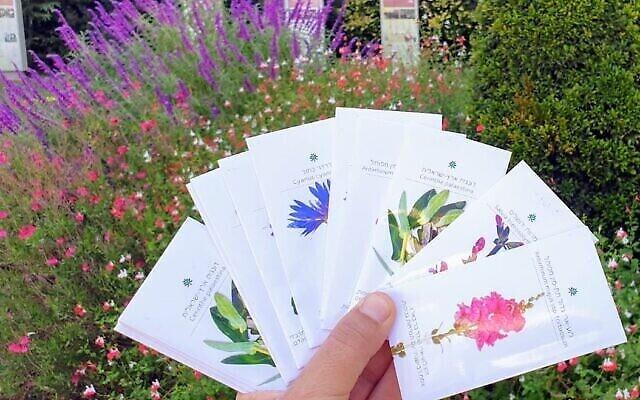 Quelques-uns des sachets de graines du patrimoine au Jardin botanique de Jérusalem (Crédit : avec l'aimable autorisation du Jardin botanique de Jérusalem).