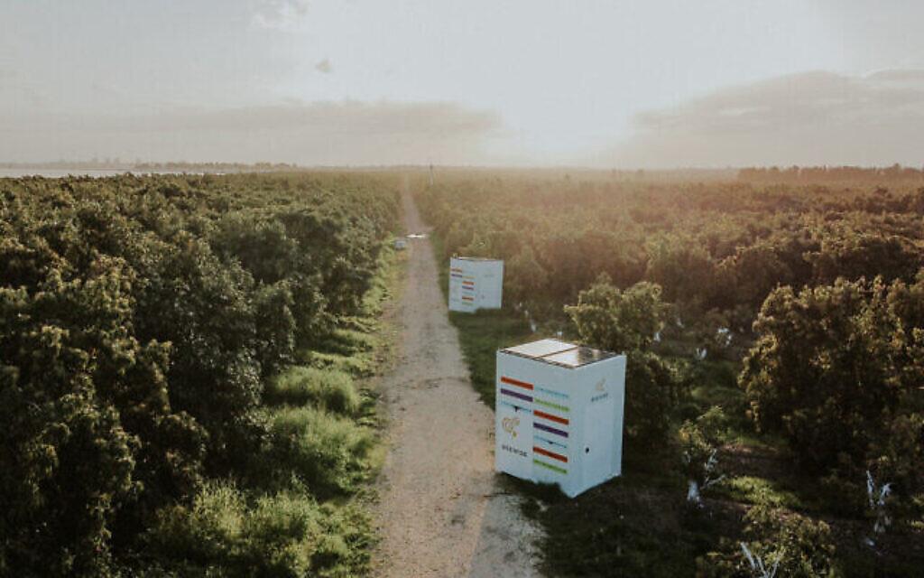 Beehomes par Beewise dans un champ.(Autorisation)