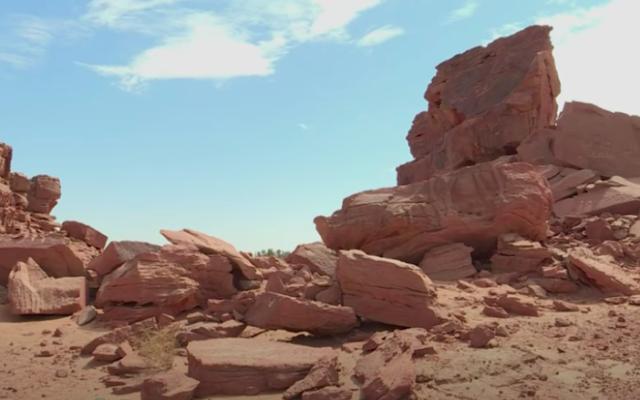 Aperçu des sculptures de dromadaires dans le désert saoudien (Crédit : capture d'écran Afp/YouTube)