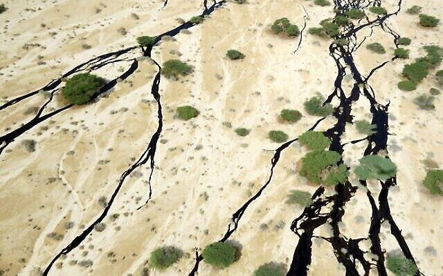 Du pétrole brut s'est répandu dans les lits des cours d'eau de la réserve naturelle d'Evrona à la suite d'une rupture d'oléoduc le 3 décembre 2014. (Porte-parole du ministère de la Protection de l'environnement / Roi Talbi)
