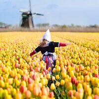Photo d'illustration d'un enfant dans un champ de tulipes en Hollande. (Crédit : iStock/ FamVeld)