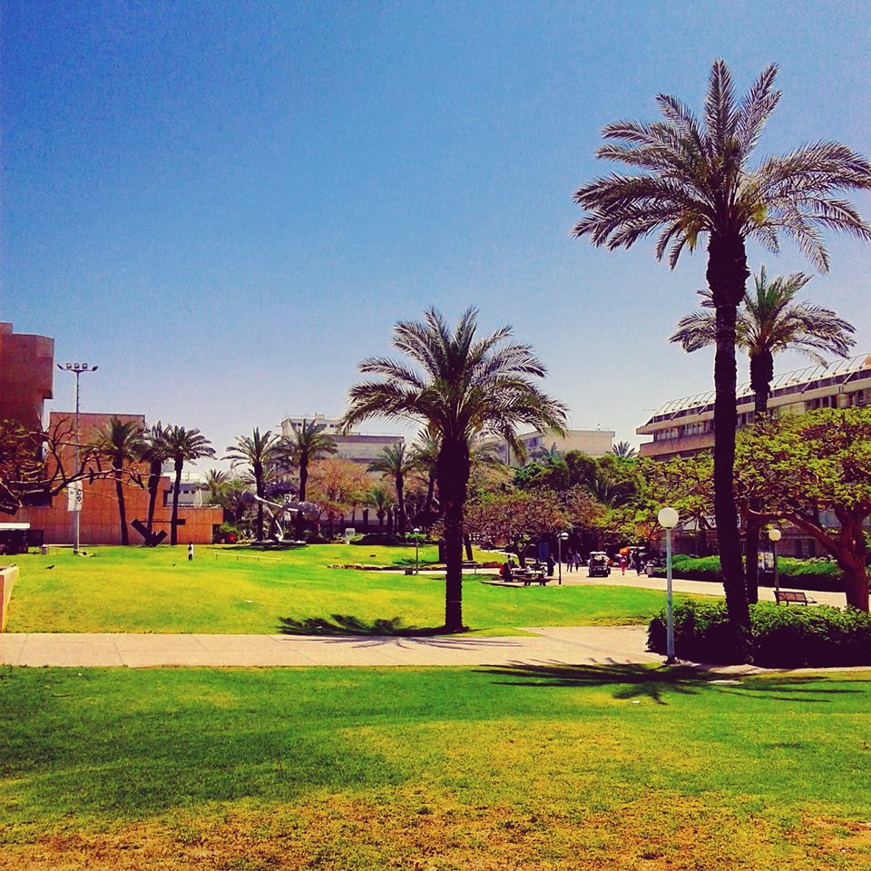 Tel Aviv today – à Kiryat Sefer garden. 19 avril 2016