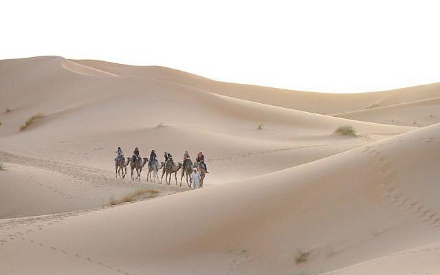 Désert du Sahara marocain - Domaine public