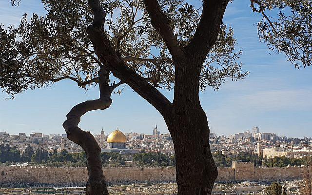 Vue de Jérusalem - crédit : Pierre Orsey