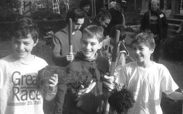 Temple Sinai students were hard at work creating a rain garden, Sunday, Oct. 21, on the grounds of the synagogue. (Photo courtesy of Rabbi Ronald B.B. Symons)