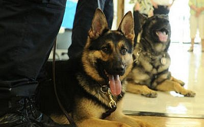Gunner the Butler Police dog, and his handler, meet the public at a ceremony, Wednesday, May 22.His fellow K-9 officer, Blade, is in the background. (Photo by Dave Prelosky, Butler Eagle)