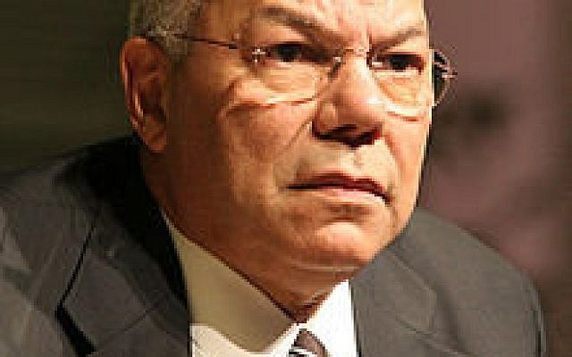 Colin Powell (Wikipedia)